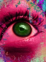 Eye of the Beholder by MaineAttraction