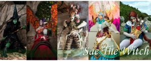 Banner2014 by saethewitch