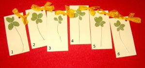 4 and 5 Leaf Clover by StregattaPuponzi