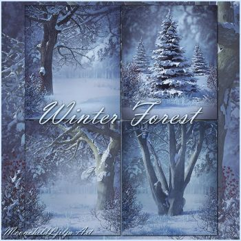 Winter Forest backgrounds by moonchild-ljilja