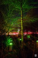 Laser tree by sylvaincollet