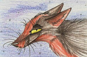 ACEO-Commission Lonewerewolf13 by 71-Blackbird
