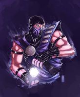 Sub-Zero commission by D33ablo