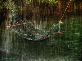 Rest in Rain HDR by evrengunturkun