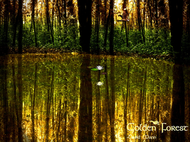 Golden Forest by K1llerW0rm
