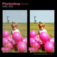 Photoshop Action - Misc 005 by primaluce