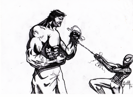 Hulk vs Spiderman by Solla-Damian