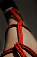 Red Rope 3 by AgatsumaSoubisan