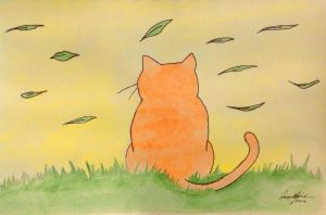 Cat Animation by Fregatto
