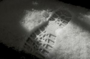 Footprints in the Snow by MaryAnnBubna