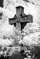 Pere Lachaise Cemetery by seancoetzer
