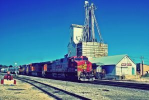 BNSF 704 by SMT-Images