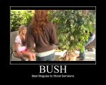 Bush by htfman114
