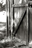 Shed - Close by Calzinger
