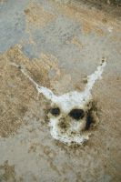 Bird Poop Donnie Darko by DeBurg
