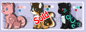 Colorful Pups Adopts 2: OPEN by Sparkle-And-Sunshine