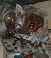 Steampunk Bobcat WIP VIII by Phoenix-Cry