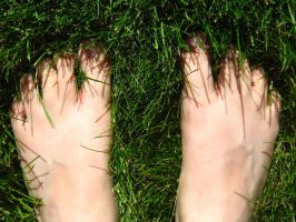 Feet Dipped in Summer WP by punchedtoast