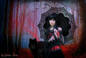 Red riding Hood by galdimi