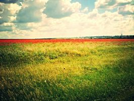 Bloody Flowers  Horizon Sky by UncleLeland