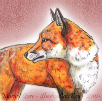 . Watercolor Red Fox . by ShadowCatsKey