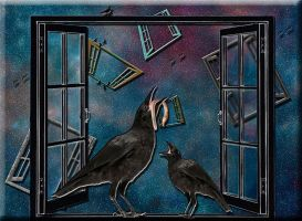 Windows and birds by jennystokes