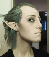 Makeup Test - Orsino from Dragon Age 2 by Minus10GradCelsius