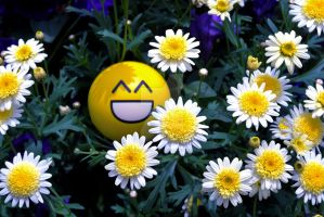 Smile by exarobibliologist