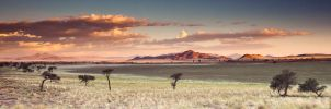 Dina Dunes by Arty-eyes