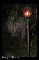 Under The Streetlight by incurable-x