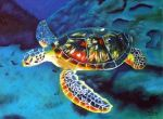 Sea Turtle by the-perspective