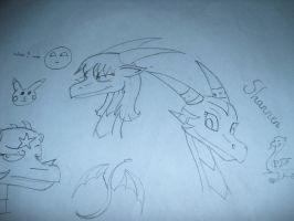 some traditional art by Princess-Shannen