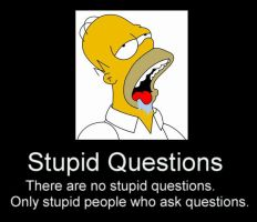 Stupid Questions by funny-pics-club