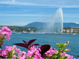 Postcard from Geneva by AgiVega
