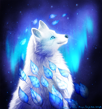 Arctic fox. by Zorakku