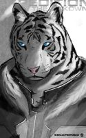 White Tiger - Expedition by workofk