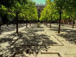 Patio de los Naranjos - Patio of the orange trees by Cloudwhisperer67