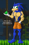 Chaos Emeralds true power by McTaylis