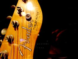 Fender by 30stmLUVER