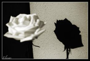 Shadow of a love... by Elessar777