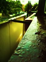 Welcome Rain. by LouiseCypher