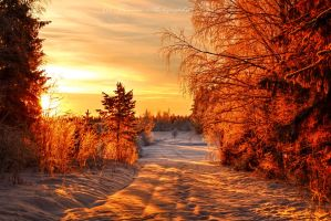 Scandinavian winter 5 by Floreina-Photography