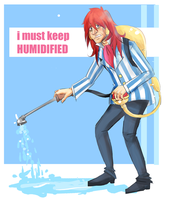 humidified by deckthisout