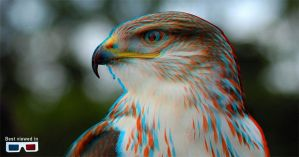 EAGLE in3D by dannieburst