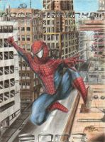 Spider-Man, 2003 by ISignRob