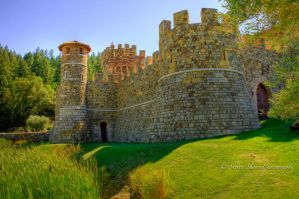 Tuscan Castle in Napa Valley by Mac-Wiz