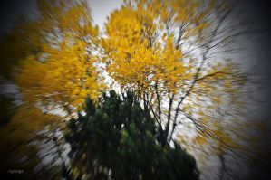 Prelude d'automne. by hyneige