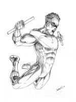 Nightwing Airborn by jamesq