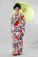 Geisha in Kimono and Obi by Della-Stock