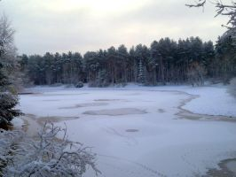 Frozen Lake by Olly-May